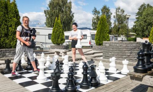 Hovedbilde-sjakk-på-kort-og-inne